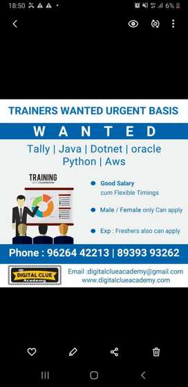 Trainers wanted urgent basis