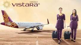 Vistara airlinse hiring male female candidate also apply