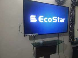 Eco star 55 inch led