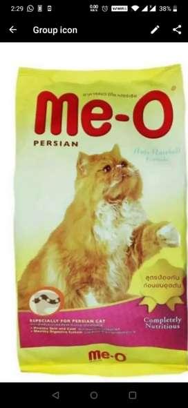 Labbaik persien kitten food