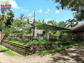 Dijual Restoran, Home Stay dan Gues House Murah di Glagah - Banyuwangi