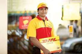DHL process hiring for relationship officer/CCE/ Backend