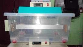 eggincubator machine