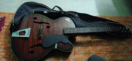 Signature s guitar