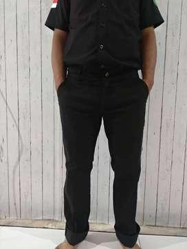 Celana Panjang Chino Standar / Celana Chino Pria / Kanvas Stretch