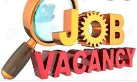 Job. Opening urgently