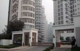 Distress deal Fully furnished Rented EWS