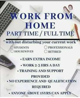 Part time, full time, home base (student, teachers, house wife)