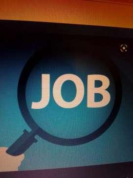 Top Company Job's