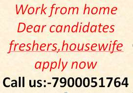 Part Time Home Based Work From Home Data Entry Freshers
