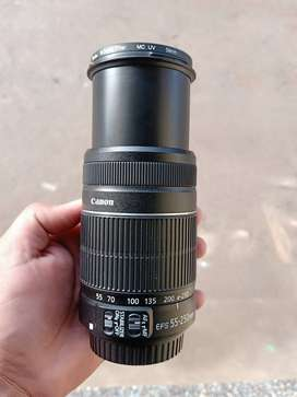 Canon 55-250mm IS lens