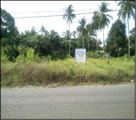 Tanah cocok untuk perumahan