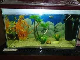Big aquarium fish tank with accessories
