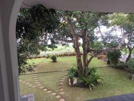7 cent House plot at panambilly nagar excellent land for house
