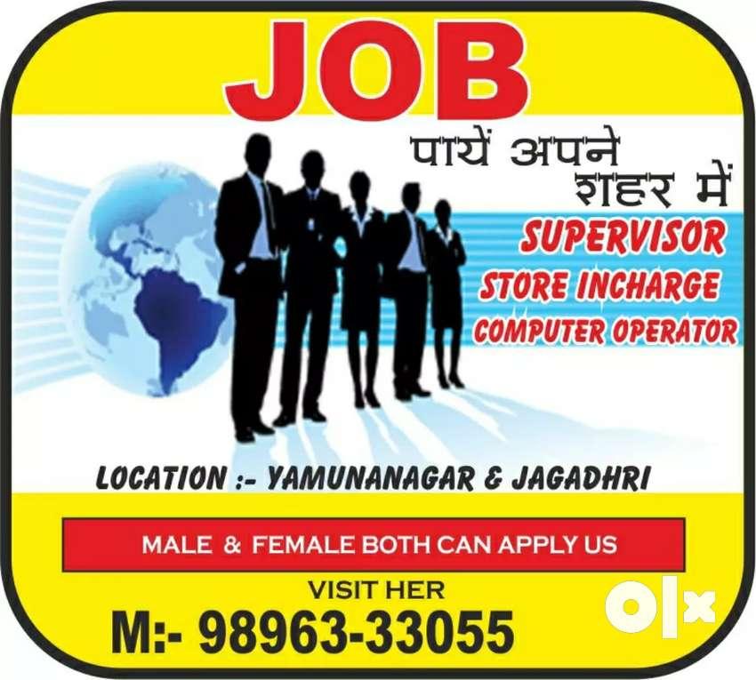 Job job job job 0