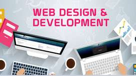 Professional Website Designers & Developers in karachi Pakistan