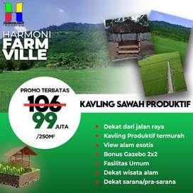 400 ribu /meter tanah sawah produktif di jual
