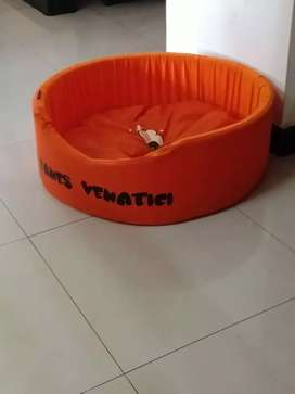 """1 week old new """"puppy bed with mattress"""" as good as new"""
