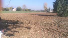 10 Marlas Plot for sale