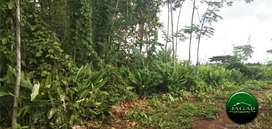Tanah Pekarangan di jalan Moyudan Sedayu ( RI 178 )