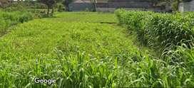 Disewakan Tanah Cocok Untuk Usaha, Gudang, Cafe, Kuliner