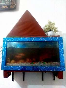 Fish aquarium with all assesories