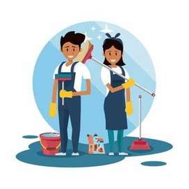 Housekeeping boy wanted for showroom