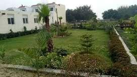 Palm green Villa'sNoida extension sector 21,simplex & Duplex villas