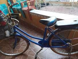 Sepeda phoenix biru