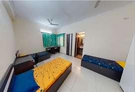 Stanza Living | Krabi House | Triple Sharing