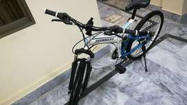 Guiness Foldable MTB bicycle