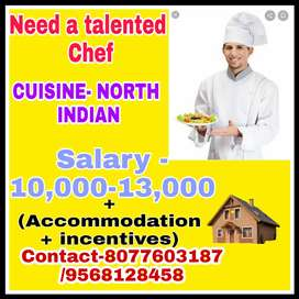 North indian chef/karigar