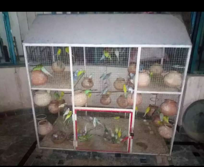 Cage for sell 0