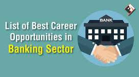 we hired fresher candidates for banking sector