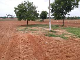 INVESTMENT PURPOSE LAND FOR SALE AT ALER BYPASS WARANGAL HIGHWAY