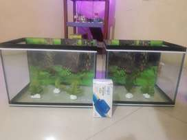 Aquarium lengkap d murah