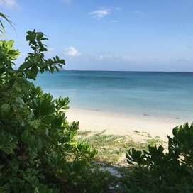 Tanah pinggir pantai