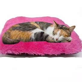HS Tempat Tidur kucing/Warm Bed/Bantal Kucing/Pets Bed ukuran Kecil