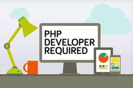 Web Developer Required (Urgent)