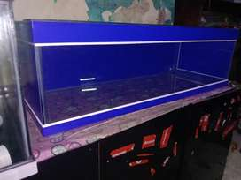 Kebayoran lama aquarium 100x40x30 skotlet biru