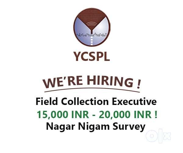 Haryana Government survey work- Field job 0