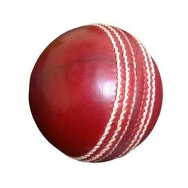 Real India match play old cricket ball