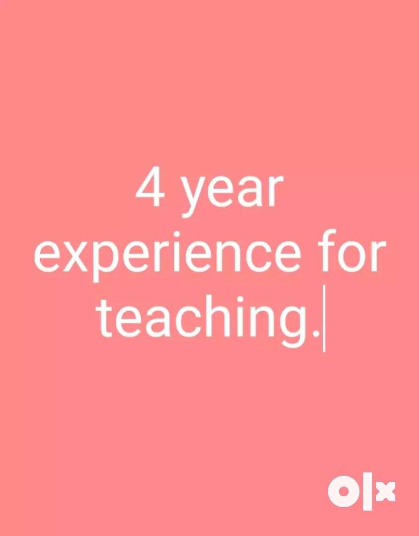 Can teach all subjects 0
