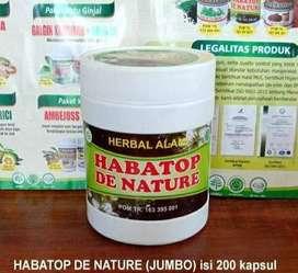 Obat Herbal Segala Penyakit dan Imunitas Daya Tahan Tubuh