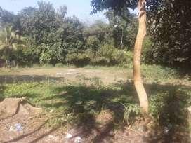 Near borghat chariali das gaon.road side land