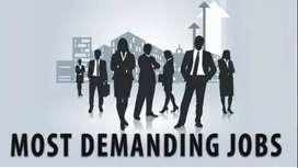 Jobs For Male & Female in Indigo