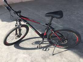 Phoenix mountain bike