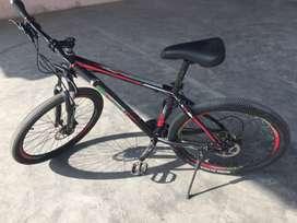 Phoenix mountain bike