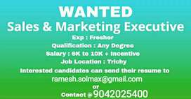 Wanted Marketing Executives and Team Leaders