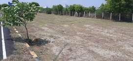 Thiruvallur DTCP plot for sale Opp to The Chennai Silks